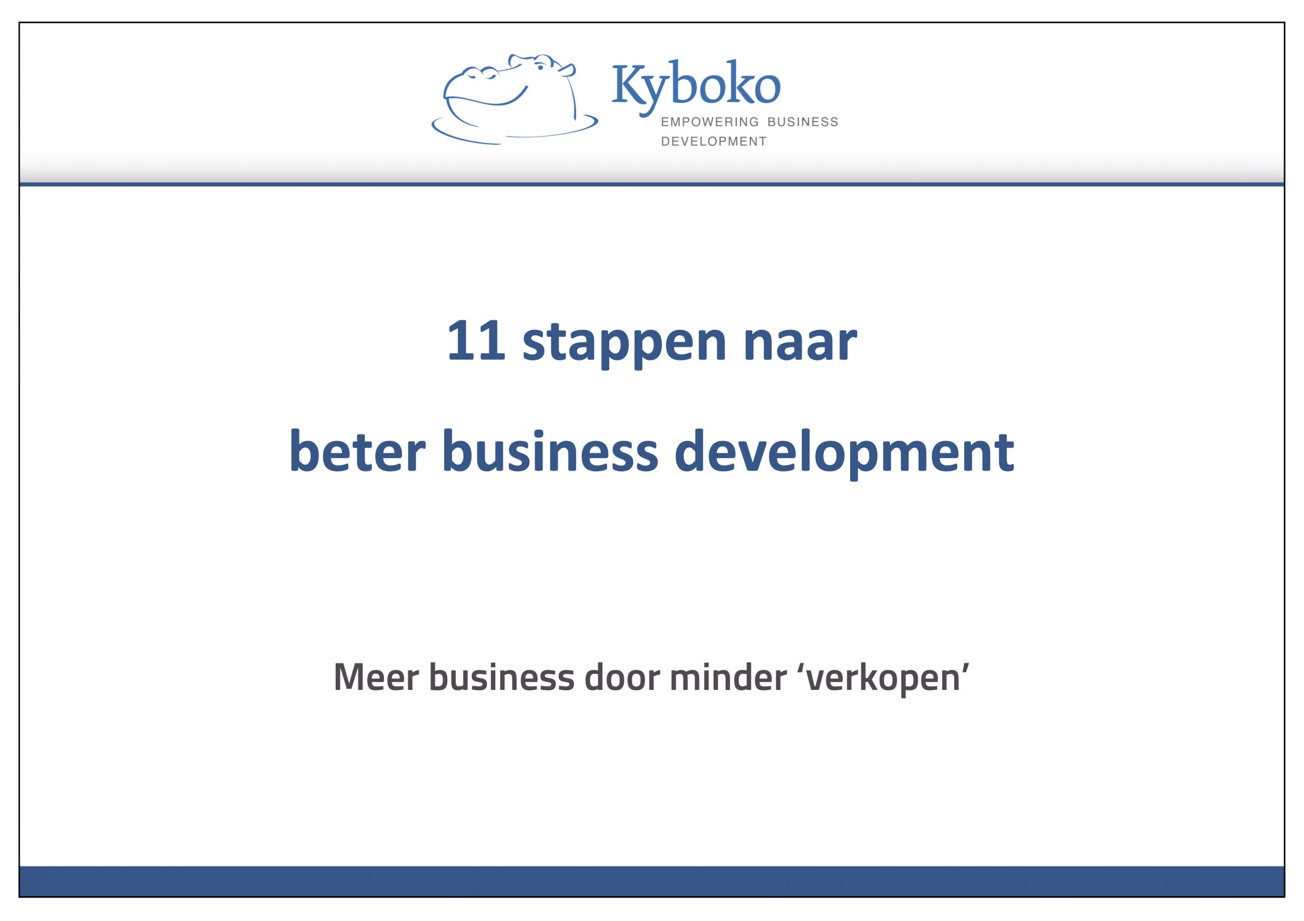 11 stappen business development